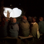 Shadow puppetry in the forest